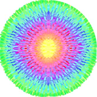 THE DAILY MANDALA by Henry Reed